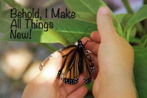 ButterflyMakeNew1