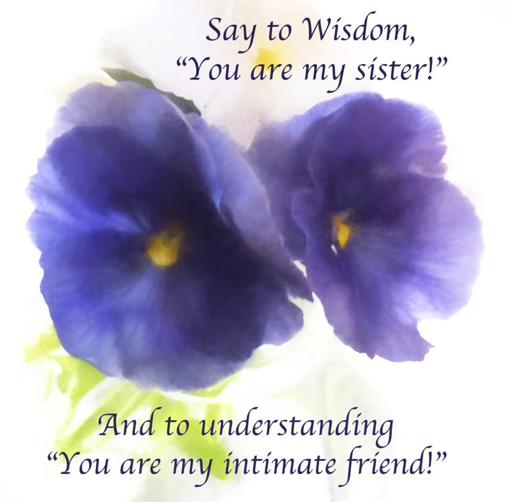 WisdomPansies